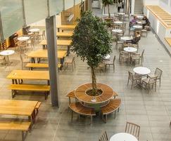 Bespoke steel and hardwood tree seat for café bar