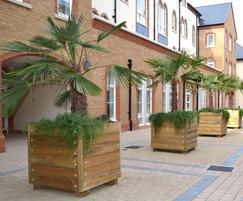Grenadier square tree planters