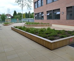 Large low level planters with  top seating