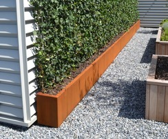 Bowden greenwall planter on roof terrace
