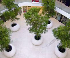 Blob Tree Planters