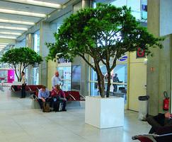 Cube Tree Planter