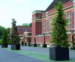 Julius Tree Planters
