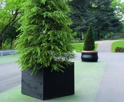 Julius Tree Planter and Bell Tree Planter