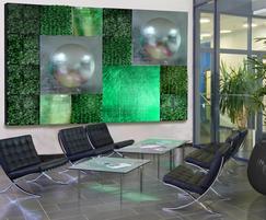Feature Wall modular interior green wall
