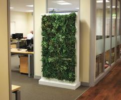 Lightweight modular Freewall room dividers