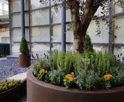 Corten steel effect GRP planter