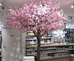 Pink Cherry blossomt ree