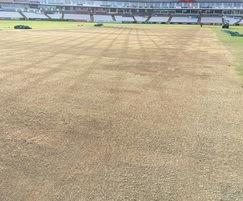 Durham renovations using J Premier Wicket