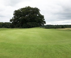 Green at 3-par Adlington Golf Course