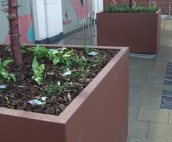 Dahlia planters, Sheffield cycle stands
