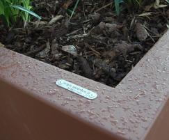 Dahlia planters