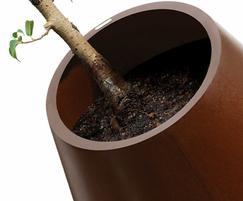 Eccentrica Interior Planter