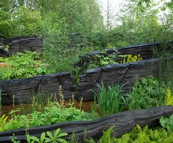 Outdoor Design: Outdoor Design helps clients achieve show garden success