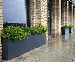 Planters commissioned by Charlotte Rowe Garden Design
