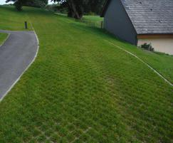 CellPave HD showing established grass finish