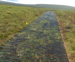 Over time, moorland grasses grow through the mesh
