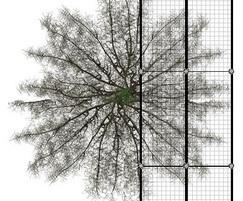 RootBridge tree root protection RB52S – 500x200cm