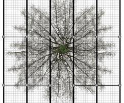 RootBridge tree root protection RB551S – 500cm2, 100cm2