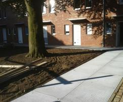 RootBridge tree root protection installed on a walkway