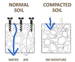 RootBridge allows water and air into the soil