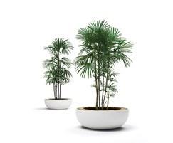 lid planter