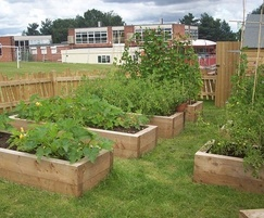 Wooden planting boxes