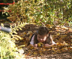 Timotay Playscapes: Forest schools - an open-ended resource