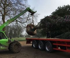 Trees supplied, transported and planted by Todds