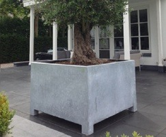 Vadim planters are suitable for medium and large trees
