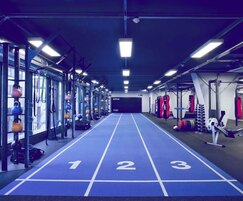 TVS Gym Flooring: TVS explains the different kinds of floors for gyms
