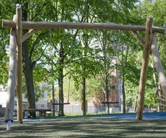 Robinia Swing No.3 Flat