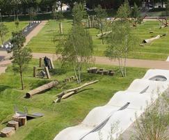 Oak and robinia play equipment - Drapers Field, Leyton