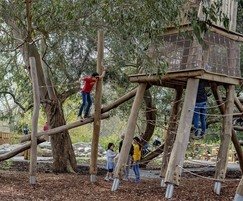 Timber climbing frame for natural play areas