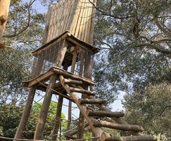 Log ladder to one of the climbing frame platforms