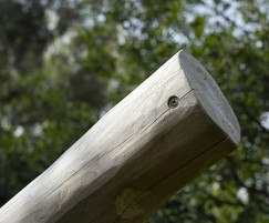 Robinia poles for swing
