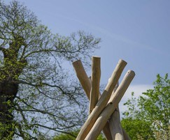 Teepee made from robinia poles in spiral-like form