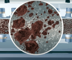 Ultrasound breaks down biogenic sludge particles
