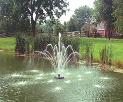 Evolution Fleur De Lis floating pond fountain