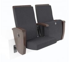 Riser mounted seating with tip up seats