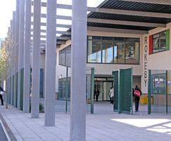 Novara-25 pivot gate: Rokeby School, Newham