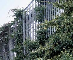 Steel grating perimeter fence as living wall