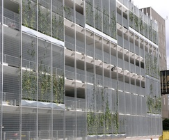 Green screen cladding for car park with ivy growing