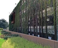 Corten grating as green wall trellis at adjacent MSCP