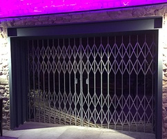 Collapsible security gates
