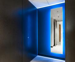 Clipclad Linear feature walls