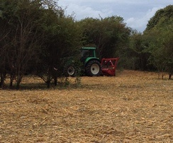 Forest mulching  and scrub clearance