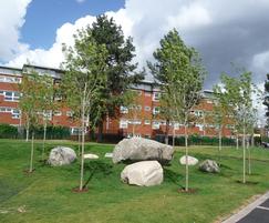 Caledonian mixed glacial boulders for a community park