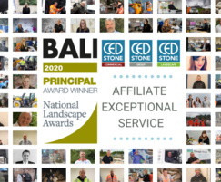 CED: CED Stone wins BALI Affiliate Exceptional Service award