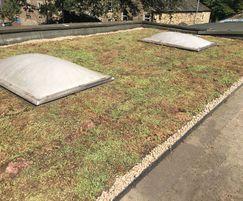 Grass Concrete's sedum Grassroof system